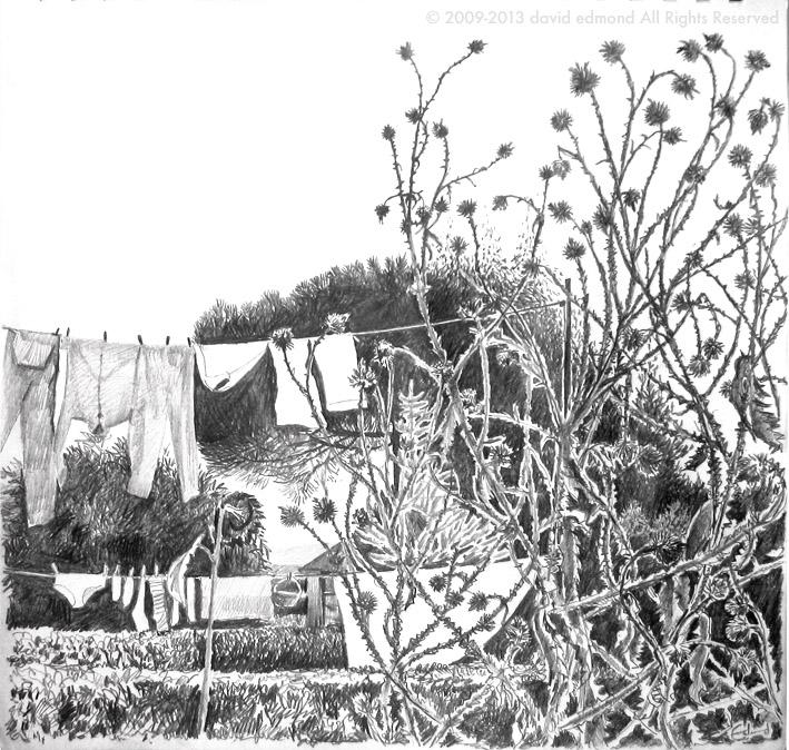 Burry Port Garden - David Edmond - 30 x 30 cm